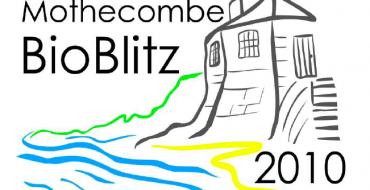 Mothecombe BioBlitz 2010
