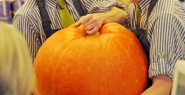 GIANT SUMO VS MUNCHKIN PUMPKINS: AND WHAT TO DO WITH THEM!
