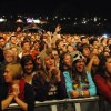 REVIEW: GREEN MAN FESTIVAL 2011